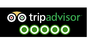 Tripadvisor Attractions Reviews Extractor